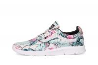 Vans Iso 1.5 + Tropical